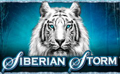 siberian storm machine a sous gratuit sans inscription