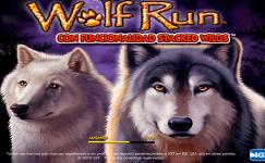 jeux sans inscription wolf run